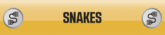 Snakes Livewire
